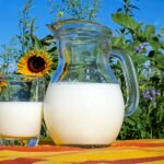 Pitcher and glass of milk on a table in front of a field of sunflowers.